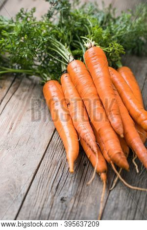 Fresh Carrots Bunch On Rustic Background. Healthy Vegan Vegetable Food. Carrots. Fresh Carrots Bunch