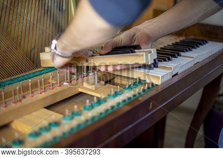 String Wooden Piano Keys On Pins, Piano Tuning, Tuner, Musical.