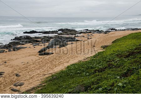 View Of Beach And Rocks From Green Vegetation Area