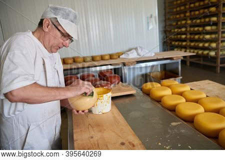 Cheese maker at local production factory