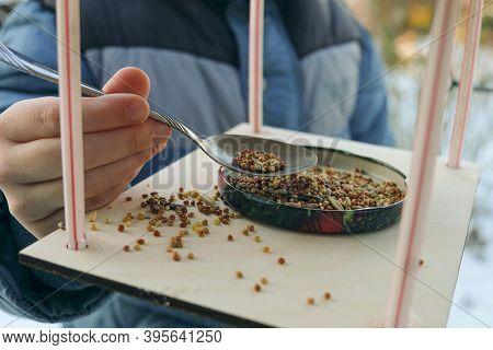 Boy Adds Grain To The Bird Feeder For Wintering Birds