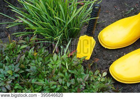 Gardening. Garden Shovel And Rain Boots Standing On The Backyard Of The Flower Garden. View Above.