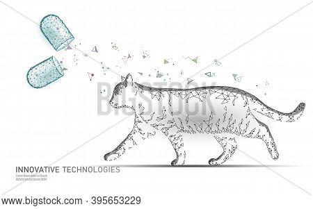 Cat Silhouette Capsule Drug Treatment. Veterinary Pharmacy Banner Template. Analysis Virus Infection