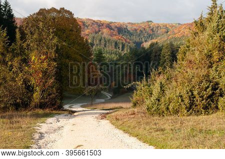 A Gravel Path Leading Into A Valley In Swabian Alb In Germany In Autumn Leaf Colors