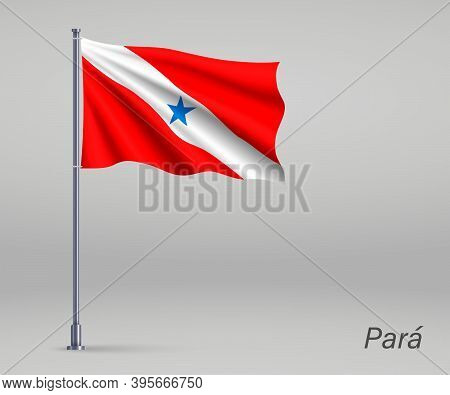 Waving Flag Of Para - State Of Brazil On Flagpole. Template For