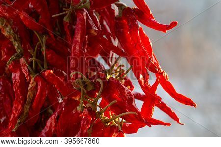 Dried Red Chili Pepper.the Pepper Crop Is Dried On The Window