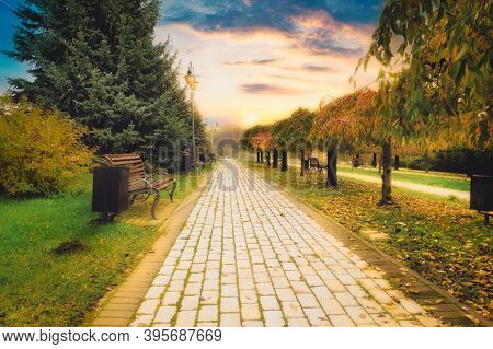 The Concept Of Walking Along An Empty Sidewalk Alley Made Of Tiles In A Quiet Autumn Park. Alley Wit