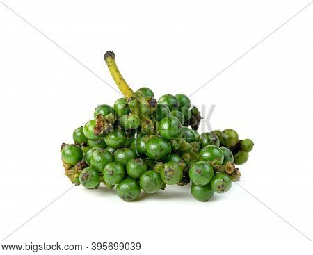 Fresh Peppercorn Or Piper Nigrum Linn Isolated On White Background