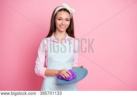 Portrait Of Her She Nice Attractive Pretty Lovely Cheerful Cheery Brown-haired Housemaid Wiping Plat