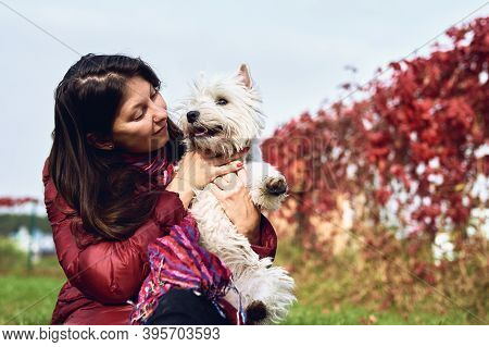 A Lovely West Highland White Terrier With Owner. Girl With Her Favorite Dog In The Back Garden. Pets