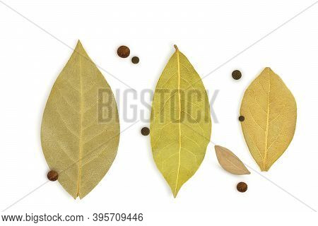 Dried Laurel Leaf And Dried Allspice On A White Background