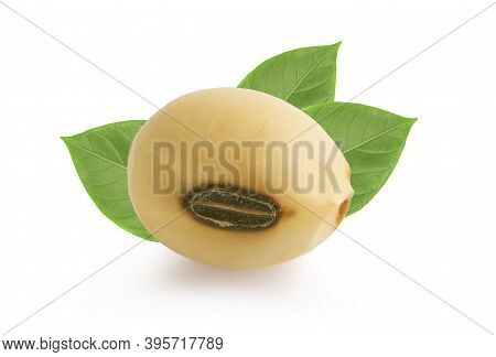 Close-up Soybeans Seeds Isolated On White Background.