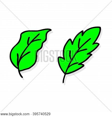 Leaves Vector Set. Leaves Isolated From The Background. Collection Black Silhouettes Of Leaves. Leav