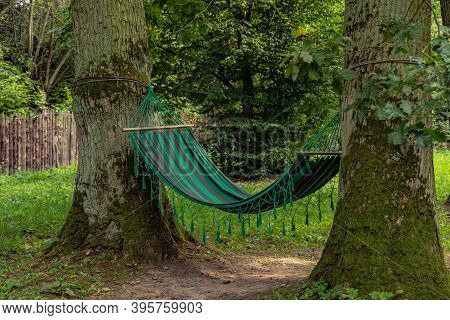 Calm Nature With Hammock Between Trees Peaceful Summer Day Time With Clean Environment Space Without