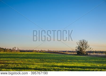 A Green Field And Farm Land In The Country In Georgia
