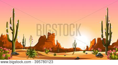 Mexican Desert. Blooming Cacti. The Mountains. Sunset. Landscape. Saguaro Cactus.