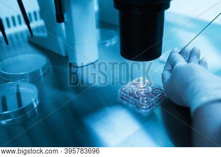 Equipment On Laboratory Of Fertilization, Ivf. Microscope Of Reproductive Medicine Clinic Fertilizin