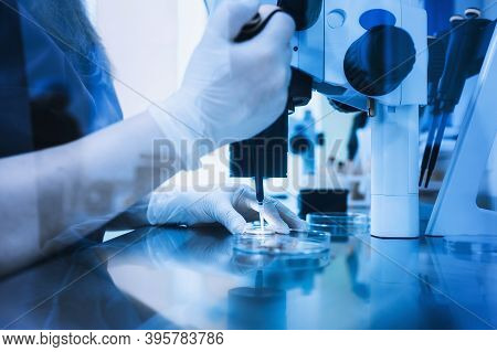 Equipment On Laboratory Of Fertilization, Ivf. Microscope Of Reproductive Medicine Clinic Fertilizin