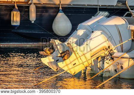 Close Up Of Two Outboard  Boat Engines In Alghero Harbor At Sunset. Sardinia, Italy
