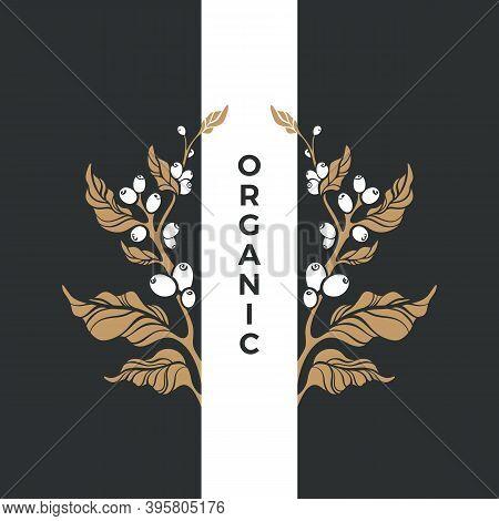 Organic Symbol. Vector Golden Branch Of Coffee Tree, Bean, Grain, Berry. Art Nature Design On Black