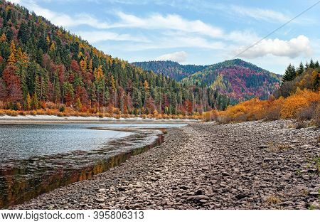 Calm Lake With Low Water - Round Stones At Shore Visible, Autumn Coloured Coniferous Trees On Other