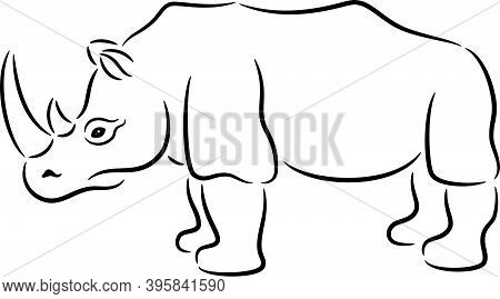 Vector Illustration Of A African Rhinoceros, Isolated