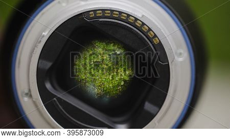 Green Trees Reflected In Camera Lens. Action. Camera Lens Is Aimed At Green Branches Of Trees Rustli