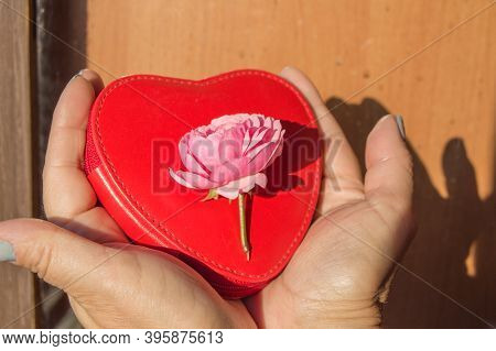 Close-up Of Two Hands Holding A Beautiful Pink Rose Lying On A Red Purse In The Shape Of A Heart. Th