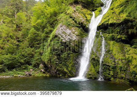 Pristine Natural Environment With A Waterfall In The Middle Of The Forest