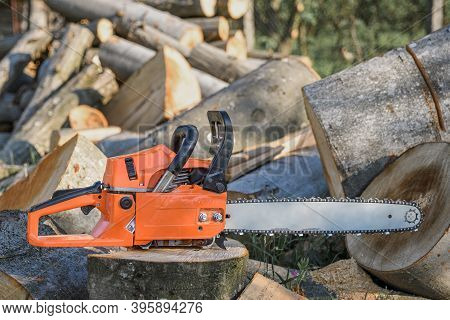 Chainsaw That Stands On A Heap Of Firewood In The Yard On A Background Of Firewood And Trees Cut By