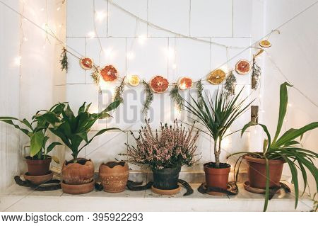 New Year Or Christmas Decorations In The Home Interior