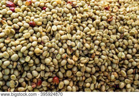 White Coffee Beans Arabica Coffee;background Image Design