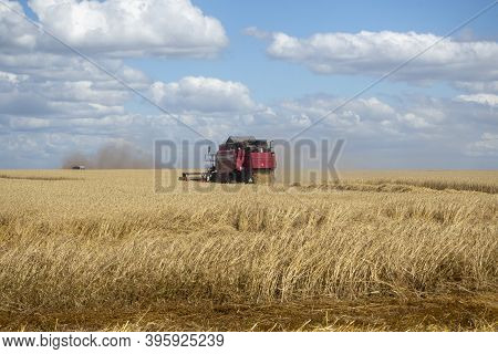 26.07.2020 Russia, Bryansk Region. Red Harvester In The Summer Field Harvests. Combine Harvester Agr