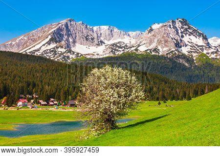 Zabljak Town And Durmitor Mountain Massif In Montenegro