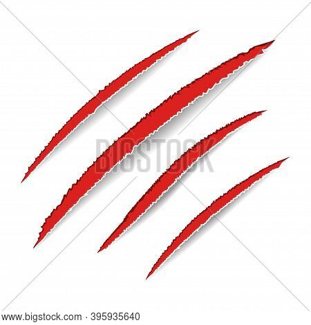 Animal Claws Scratches. Red Bloody Claw Scars. Dog, Cat, Lion, Tiger Or Bear Paw Print. Four Nails T