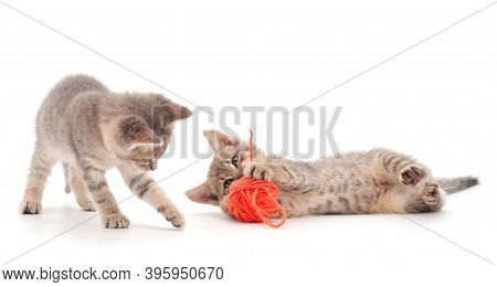 Little Kittens Playing With A Ball Of Yarn Isolated On White Background.