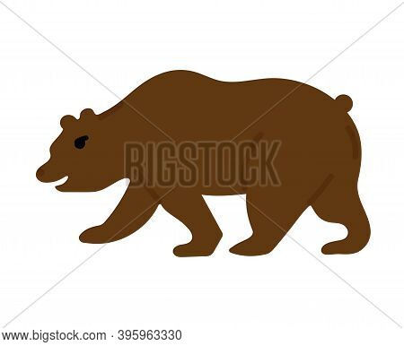 Grizzly Bear. Hand Drawn Vector Illustration Isolated On White Background