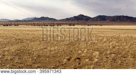 View Of Twyfelfontein Landscape