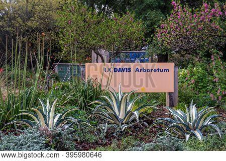 Davis, Ca, Usa, 21 March 2020. Sign Marking The Uc Davis Arboretum On A Spring Morning. The Arboretu