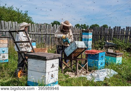 A Beekeeper Is Using A Blower, Blowing Air Inside The Hive Full Of Working Bumble Bees To Take Out H