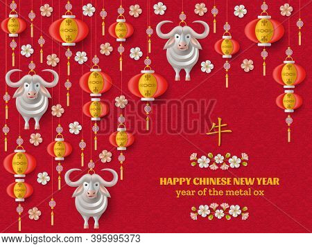 Happy Chinese New Year Background With Creative White Metal Ox, Hanging Lanterns. Translation Ox