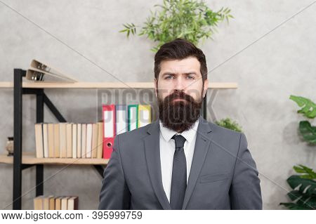 Head Of Human Resources Department. Man Bearded Serious Office Background. Provide Consultation To M