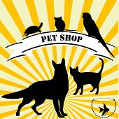 Pet shop advertising with pets and text over twirl background poster