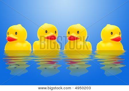 Row Of Ducks
