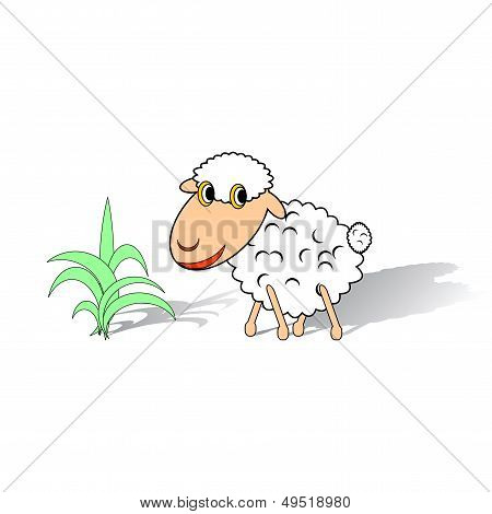 A Funny Sheep On A White Background
