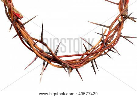 crown made of thorns isolated on white background