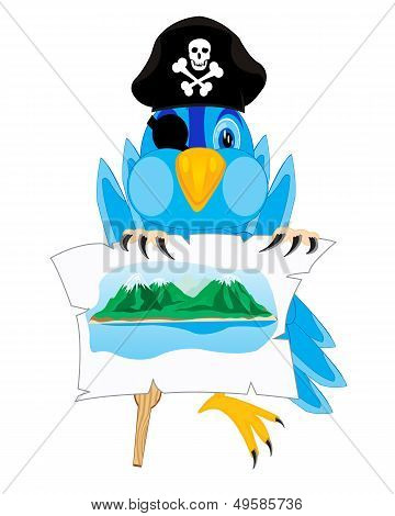 Bird pirate