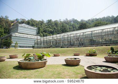 Building Plant Breeding