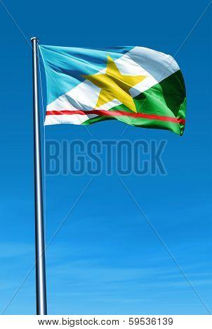 Roraima (Brazil) flag waving on the wind