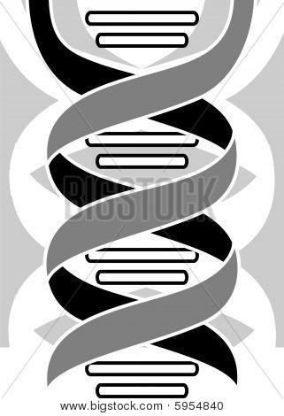 Illustration of colour pattern of DNA model poster